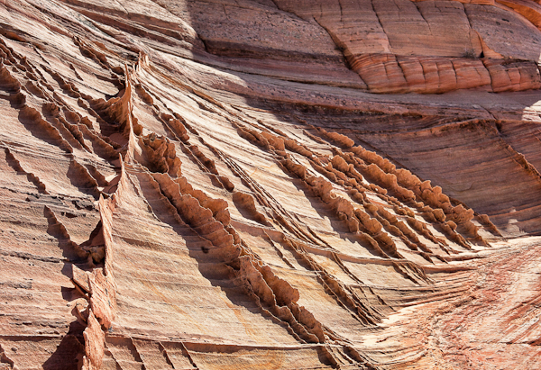 Incredible Fins in Cottonwood Canyon in Coyote Buttes South. (Photo credit Mr. Misadventures)