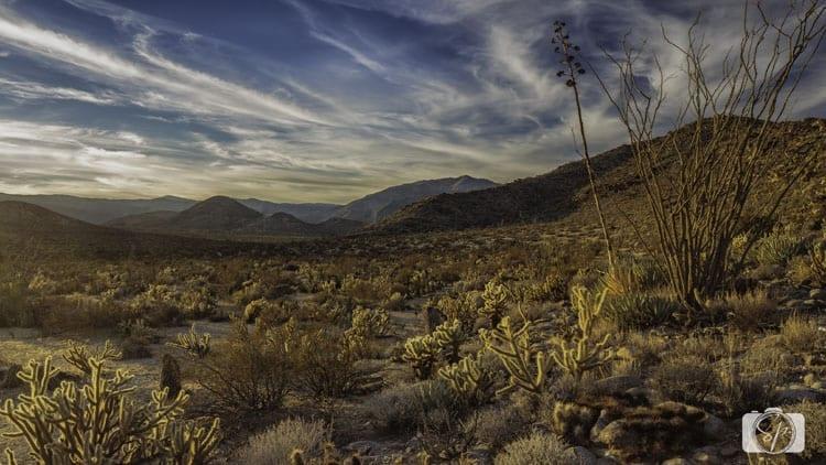 Little-Blair-Valley-ANZA-BORREGO-DESERT