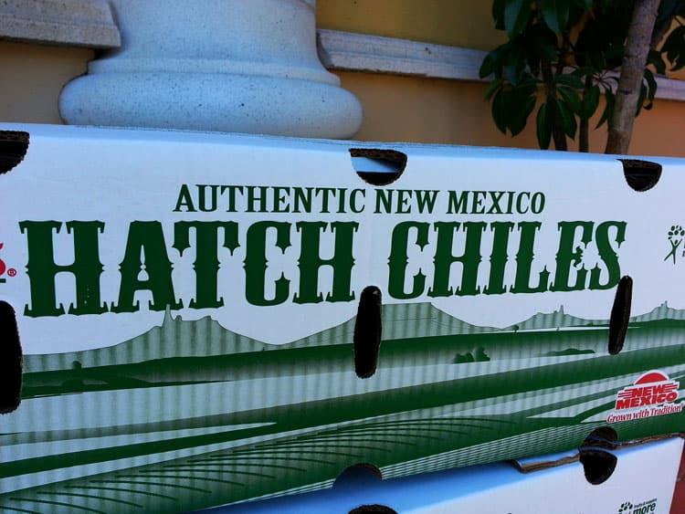 Authentic-Hatch