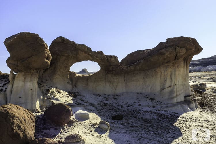 NEW MEXICO-Bisit-Arch