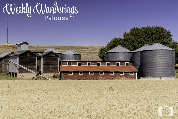 Weekly-Wanderings-Palouse