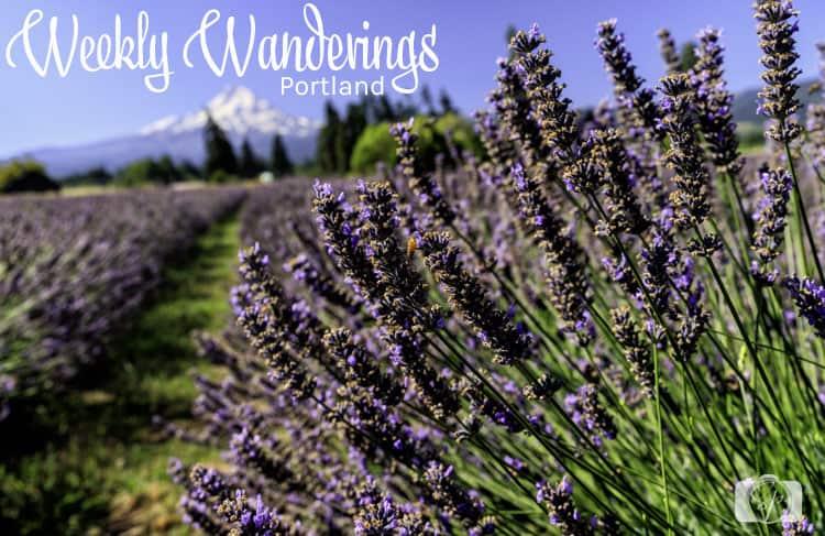 Weekly-Wanderings-Portland