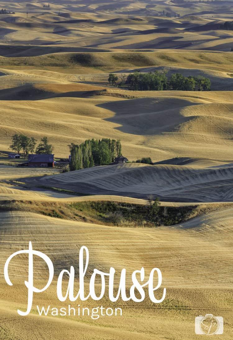 Palouse Steptoe Butte