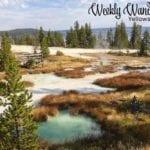 Weekly Wanderings #37 – Yellowstone